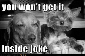 funny-dog-pictures-you-wont-get-it-inside-joke