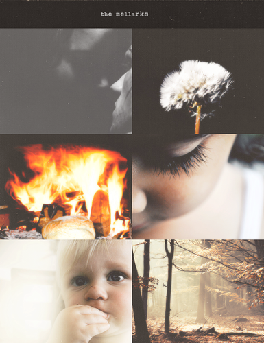 What Does Peeta See In Katniss Anyway Part Mockingjay