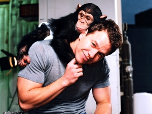 Because it's Mark Wahlberg with a chimp on his back, that's why!