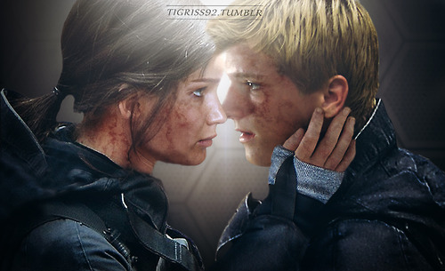 How much of this will we see in Mockingjay Part 2? (Source: tigriss92.tumblr.com)