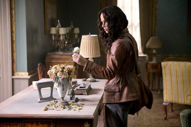 Katniss Roses