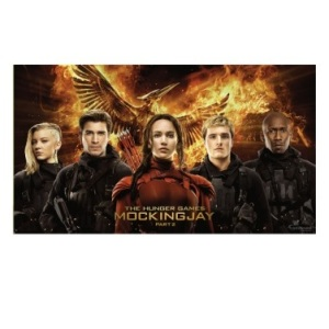 hunger games wall mural